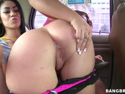 Busty chicks showing their asses and posing in a car