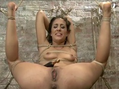 slim brunette tied 2