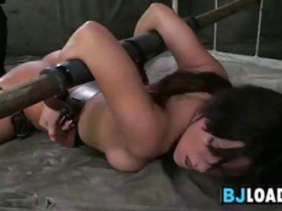 Strapped Slut Sucking Cock