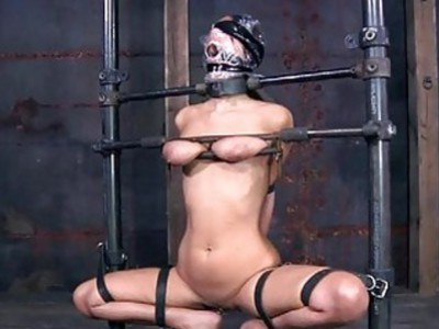 Hotty in latex suit gets fur pie and anal prodding