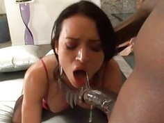 Vehement white hottie feels pecker in all holes